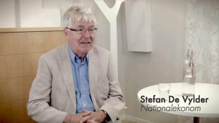 Stefan De Vylder, nationalekonom